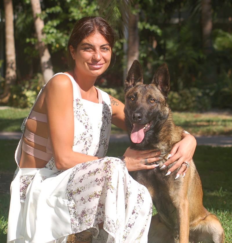 CC Protection Dogs - The Best Protection Dogs in Florida