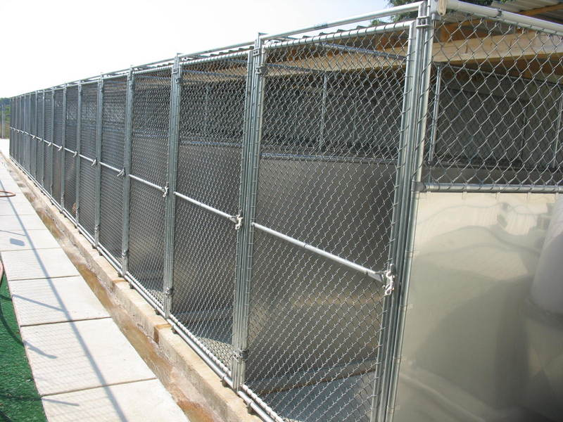 Command Control  Protection Dogs , Kennel
